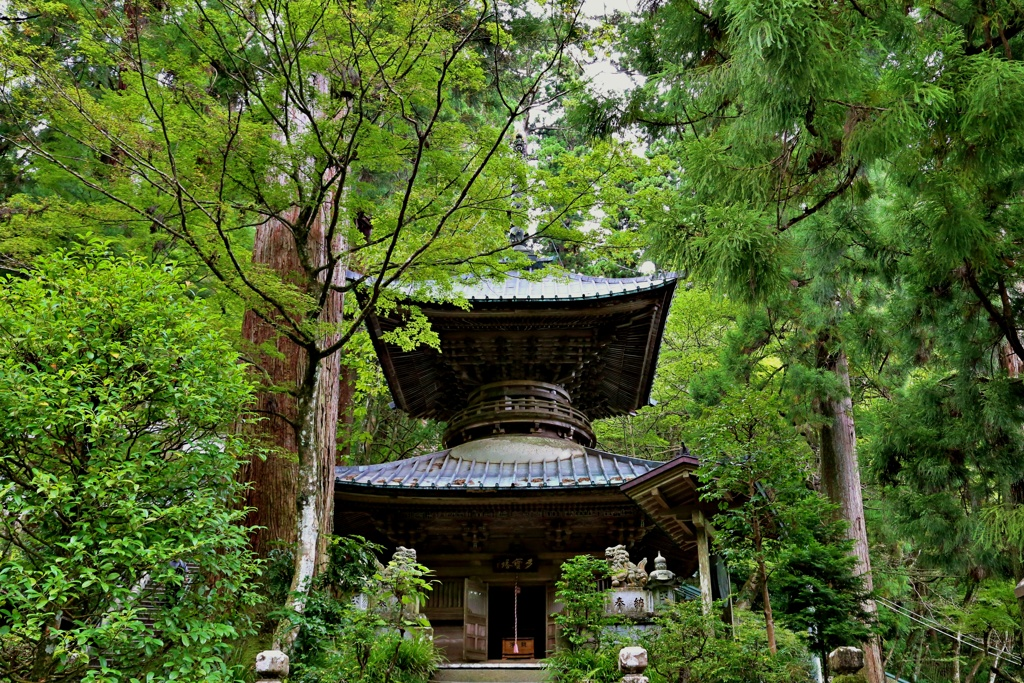 箱根山麓深森散歩:多宝塔