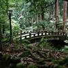 風景に溶け込む橋