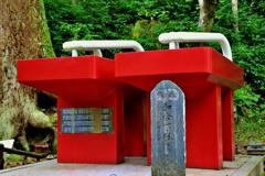 箱根山麓深森散歩:最乗寺の目玉 和合下駄