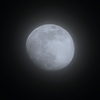 薄雲に霞む今夜の月