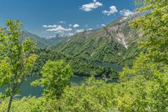 田子倉湖の新緑