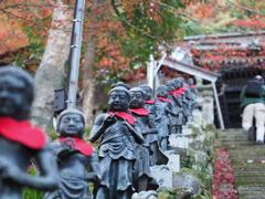 丹沢 大山寺1