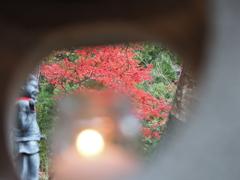 丹沢 大山寺2