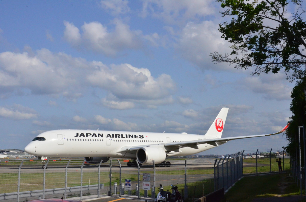 JAL 118
