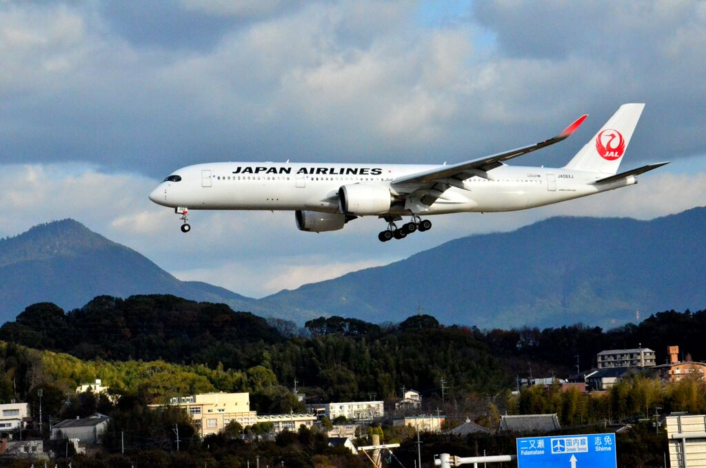 JAL 50