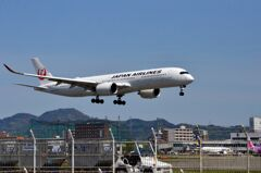 JAL 95