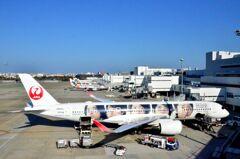 JAL A350 「嵐」 08