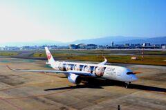 JAL A350 「嵐」 07