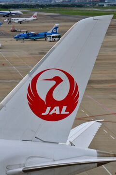 JAL 214