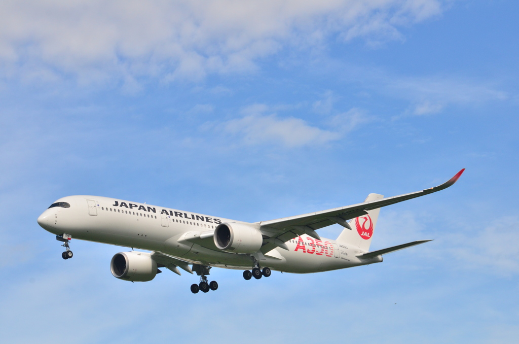 JAL 207   Airbus A350