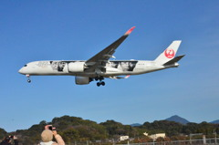 JAL 124