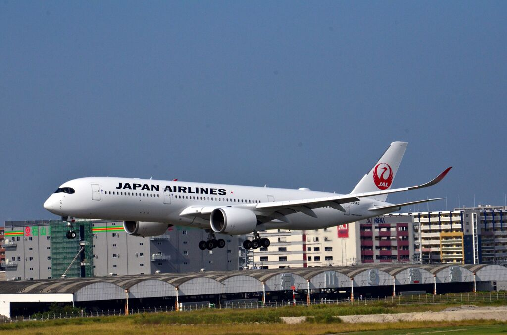 JAL 313