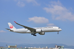 JAL 204   Airbus A350