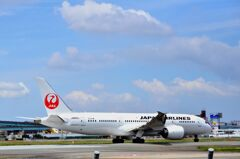 JAL 146