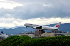 JAL 268