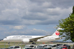 JAL 100