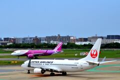 JAL 150
