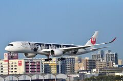 JAL A350 「嵐」 05