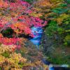2020-10-16_龍頭ノ滝(上流-3)
