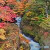 2020-10-16_龍頭ノ滝(上流)