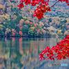 2020-10-16_湯ノ湖(1)