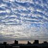 朝日のわた雲
