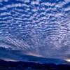 夕方のうろこ雲