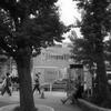 原宿駅前(2)