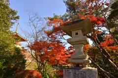 成田山新勝寺(奥の院)