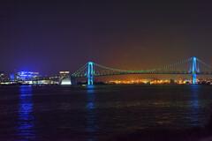 竹芝桟橋からの眺め