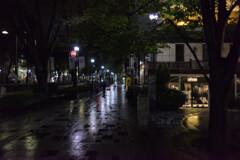 表参道の夜を彷徨う
