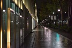 表参道の夜を彷徨う6