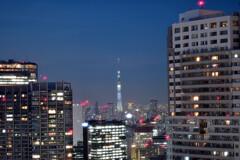 東京ビル群2