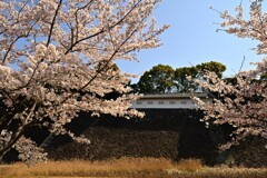 江戸城(富士見多聞)