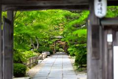円通院(松島)