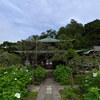 瑞泉寺の本堂2020初秋