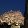 高麗神社の御神木ツーショット