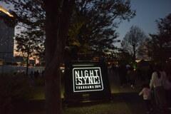 NIGHT SINC 2019