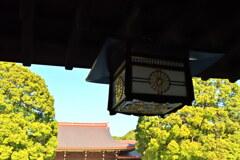 明治神宮・楼門から本殿を望む