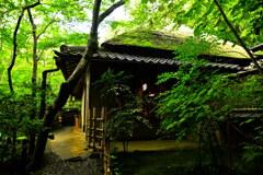 草庵と吉野窓(祇王寺)