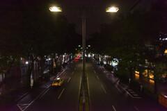表参道の夜を彷徨う2