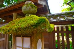 石灯籠(宇治上神社)