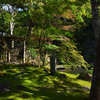 慈恩禅寺庭園 荎草園