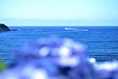 オールブルーに白い波