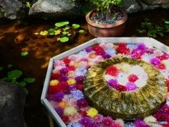 華の池ー2