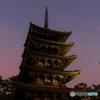 ライトアッププロムナードー7 興福寺五重塔