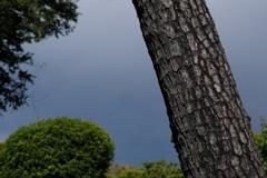 通り雨の空