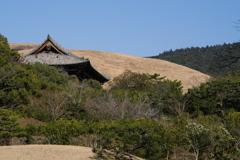 2021年 春の三笠山