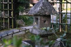 2021年 奈良の春