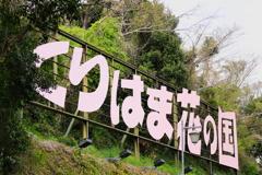 くりはま花の国 看板ー1